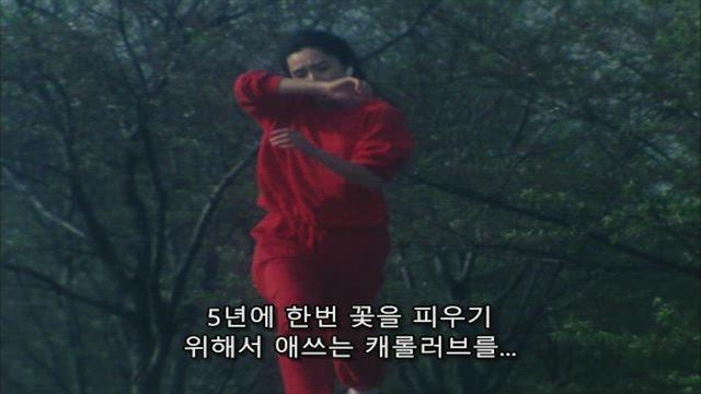 광전대 마스크맨 15화 썸네일